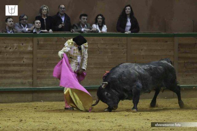 Paco Ureña capote.jpg