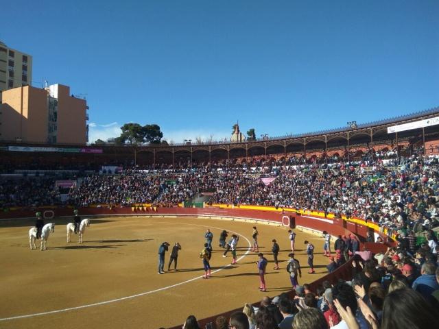 toros castellón