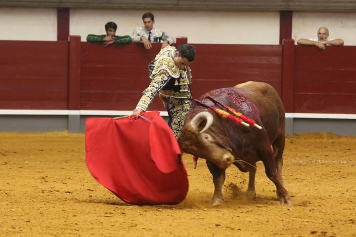 Javier Cuesta 15/04/2017 Alba de Tormes (Salamanca). Paco Ureña. La Gaceta