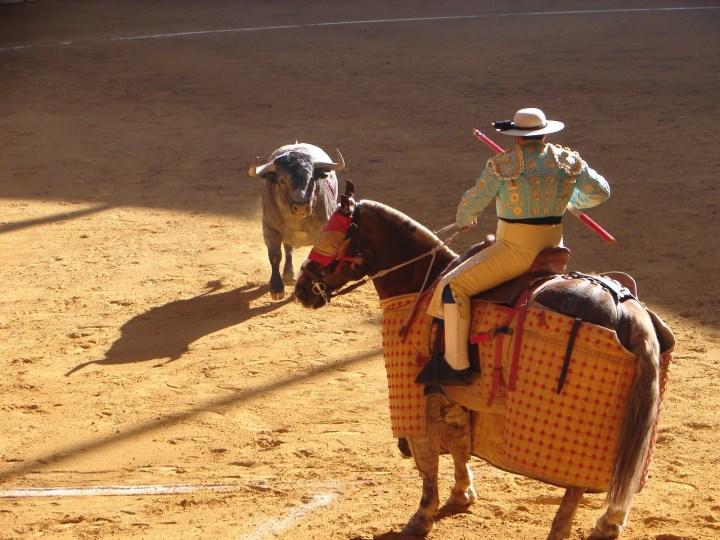 quesero partido resina concurso zaragoza 24-4-2010