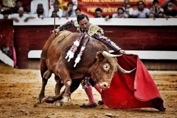 lea-vicens-dax-2017-william-lucas-2-2017-william-lucas