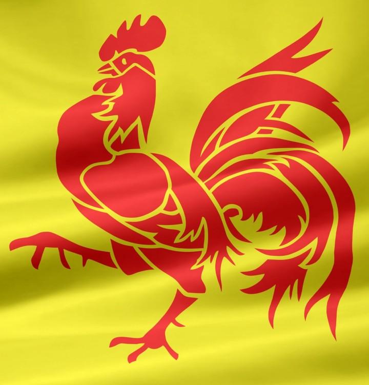 bandera de valonia