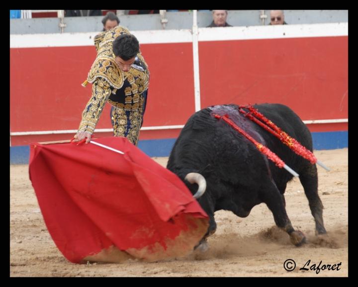 CABEZO DE TORRES-05-03-11 068 copia
