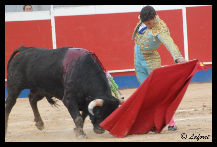 CABEZO DE TORRES-05-03-11 291 copia