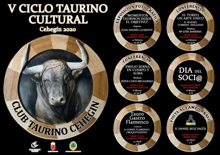 CARTEL CICLO 2020..