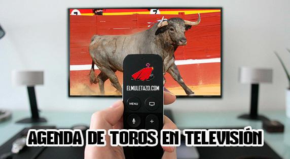 TOROS EN TELEVISIÓN